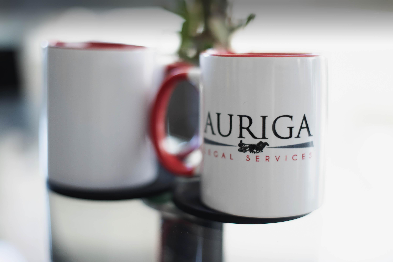 domaines d'intervention d'Auriga